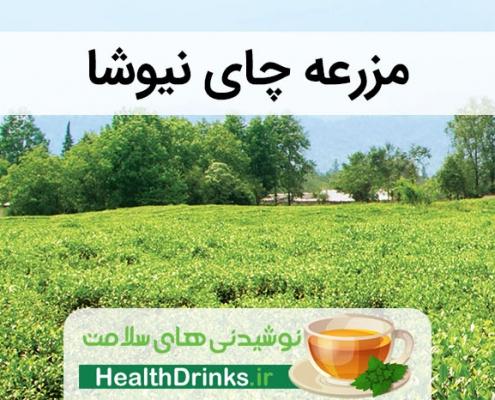 مزرعه چای نیوشا